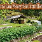 32 Ways to Earn Money from Your Homestead