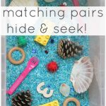 Matching Pairs Hide and Seek Game For Toddlers