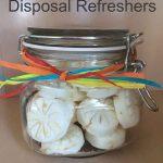 DIY Garbage Disposal Refreshers