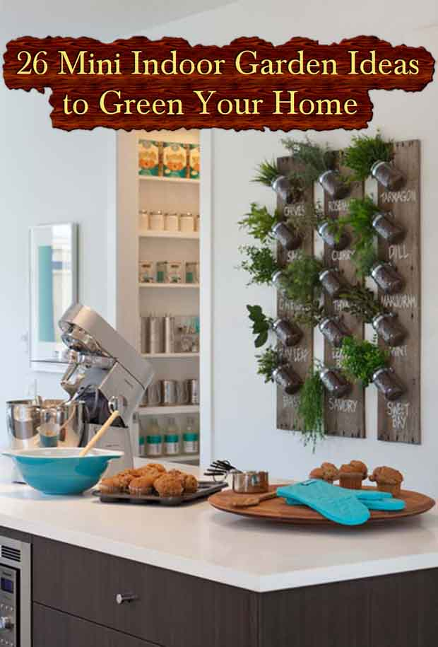 26 Mini Indoor Garden Ideas To Green Your Home. Photo Credit To  Www.woohome.com