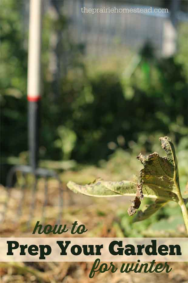 How To Prepare Your Garden For Winter Lil Moo Creations