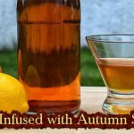Rum Infused with Autumn Spices