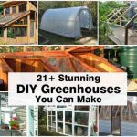 21+ DIY Greenhouses You Can Make