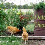 Gardening Checklist for October