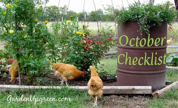 Gardening checklist for october lil moo creations - Gardening in october a brief to do list ...