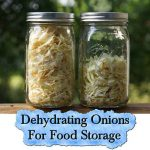 Dehydrating Onions For Food Storage
