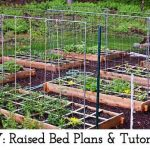 DIY: Raised Bed Plans & Tutorials