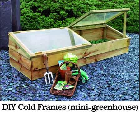 DIY Cold Frames (mini-greenhouse) - Lil Moo Creations