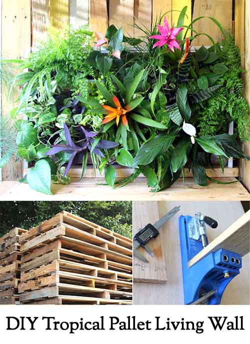 DIY Tropical Pallet Living Wall. photo credit: apieceofrainbow