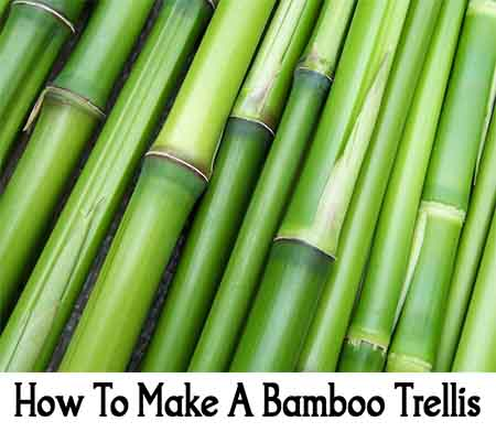 how to make a bamboo trellis lil moo creations