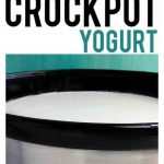 Homemade Crockpot Yogurt