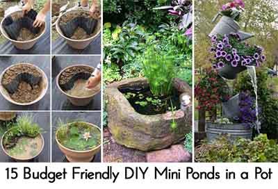 15 Budget Friendly DIY Mini Ponds in a Pot
