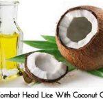 Combat Head Lice With Coconut Oil