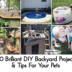20 Brilliant DIY Backyard Projects & Tips For Your Pets