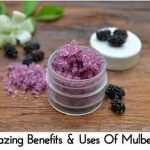 Amazing Benefits & Uses Of Mulberries