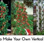 How To Make Your Own Vertical Planter