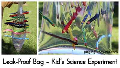 Leak-Proof Bag – Kid's Science Experiment - Lil Moo Creations