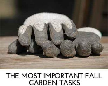 Great depression era real food recipes lil moo creations - Fall gardening tasks ...