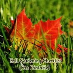Fall Gardening Checklist {Free Printable}