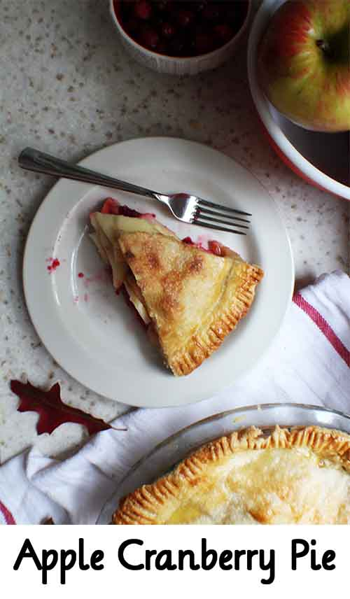 Apple Cranberry Pie - Lil Moo Creations