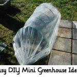 Easy DIY Mini Greenhouse Ideas