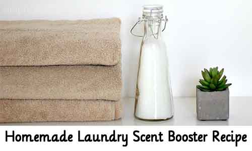 Homemade laundry scent booster recipe lil moo creations - Homemade scent recipes ...