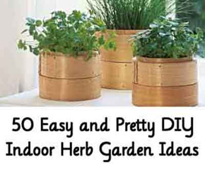 50 easy and pretty diy indoor herb garden ideas lil moo for Indoor gardening made easy