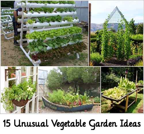 10 Creative Vegetable Garden Ideas: 15 Unusual Vegetable Garden Ideas