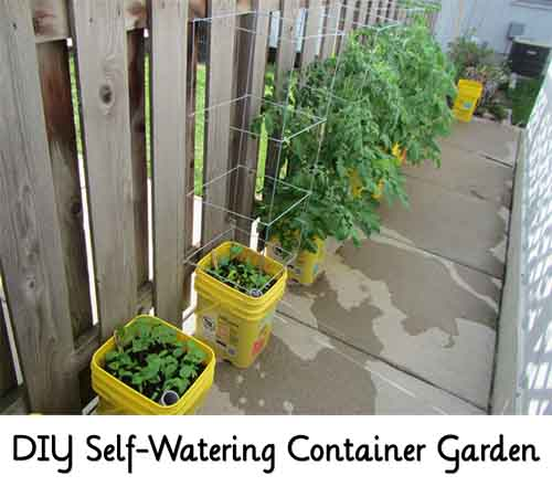 Diy Self Watering Container Garden Lil Moo Creations