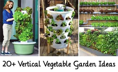 Vertical Vegetable Gardening Ideas gardens 20 Vertical Vegetable Garden Ideas Image Goodshomedesigncom