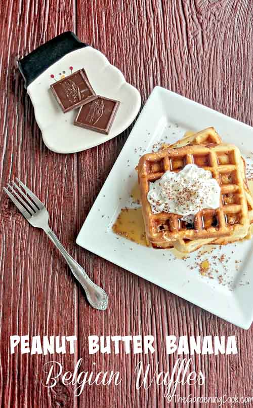 Peanut Butter Banana Belgian Waffles with Dark Chocolate - Lil Moo ...