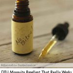 DIY Mosquito Repellent That Really Works