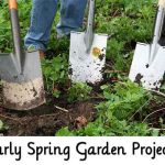 Early Spring Garden Projects