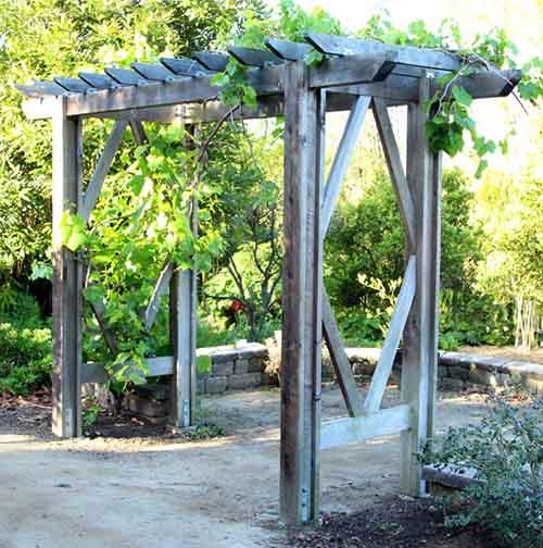 Diy Grape Arbor Free Building Plan Lil Moo Creations