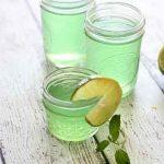 Homemade Mojito Gel Air Fresheners