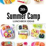 30+ Summer Camp Lunchbox Ideas
