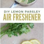 Parsley Lemon DIY Air Freshener