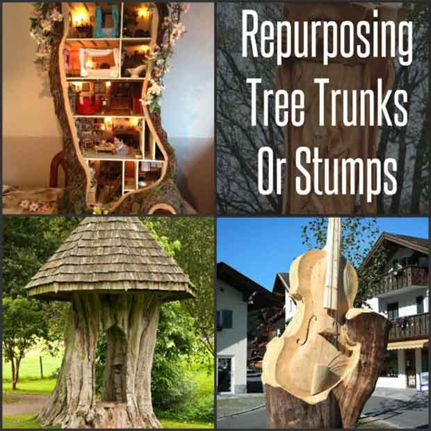 Repurposing-Tree-Trunks-Or-Stumps