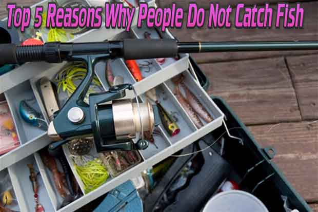photo credit to prepforshtf.com