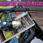 Fact of the day: Top 5 Reasons Why People Do Not Catch Fish