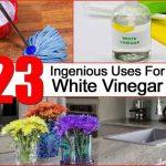 23 Ingenious Uses For White Vinegar