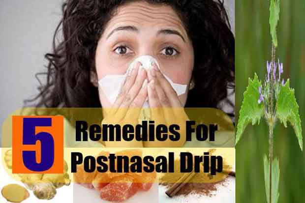 photo credit to www.findhomeremedy.com
