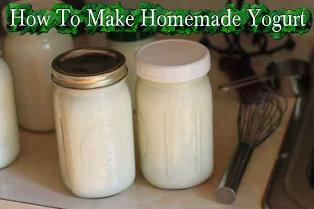 photo credit to www.thefrugalgirl.com