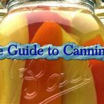 Ultimate Guide to Canning Fruits