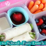 Back to School – Easy Lunch Box!