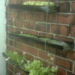 Vertical hydro veg patch