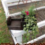 DIY Planter Box with Bird Feeder