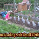Homesteading with Small Children