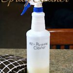 DIY All-Purpose Kitchen and Bathroom Spray Cleaner