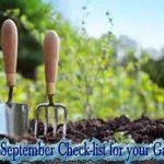 September Check-list for your Garden